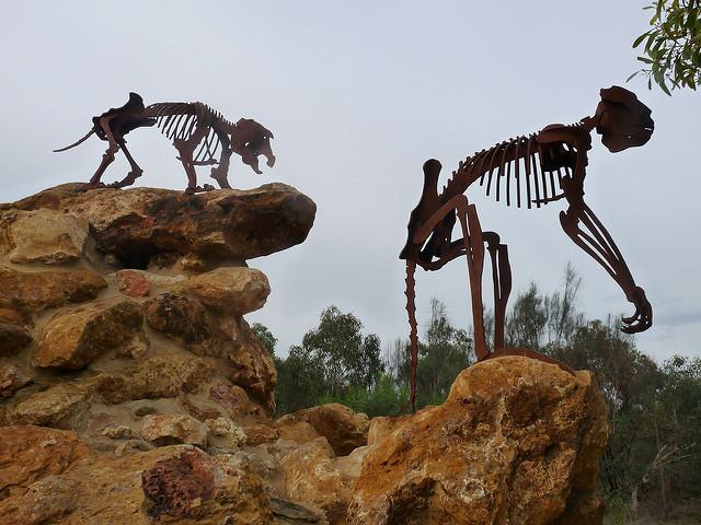 オーストラリアの哺乳類化石地域(リヴァーズレー/ナラコーアテ)の画像3