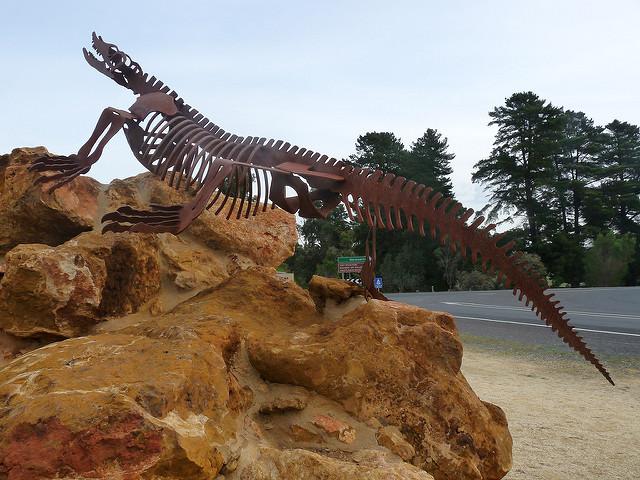 オーストラリアの哺乳類化石地域(リヴァーズレー/ナラコーアテ)の画像5