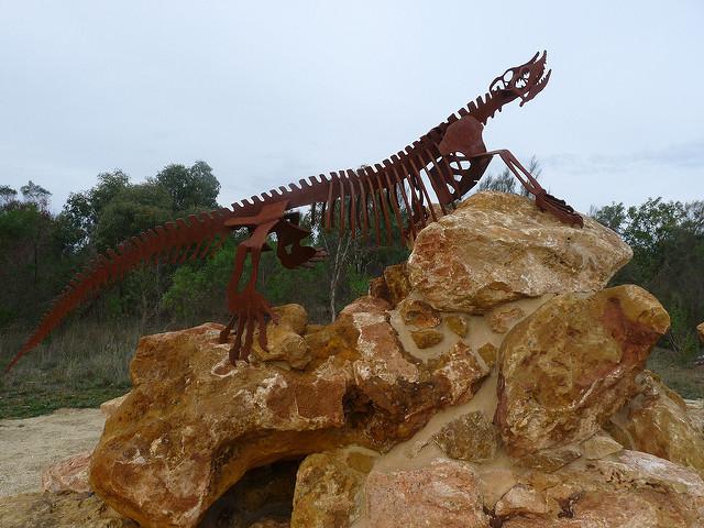 オーストラリアの哺乳類化石地域(リヴァーズレー/ナラコーアテ)の画像6
