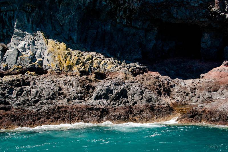 マッコーリー島の画像1