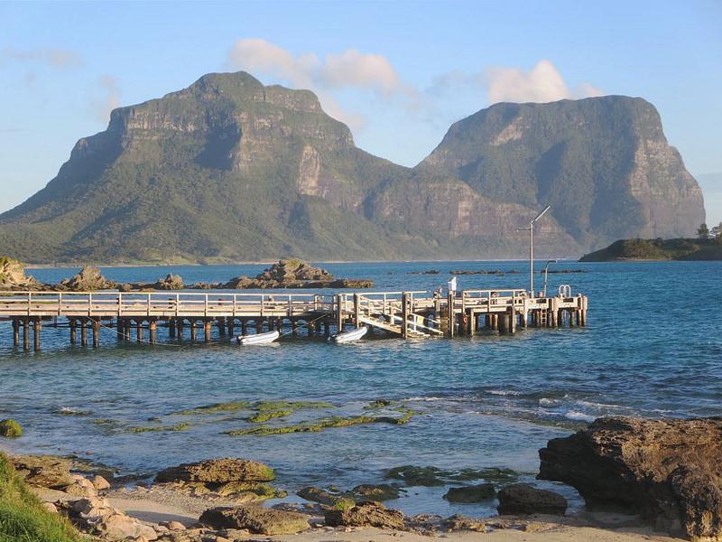 マッコーリー島の画像3