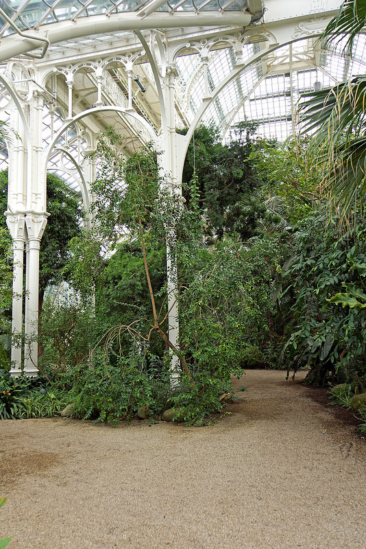 シェーンブルン宮殿と庭園群の画像11