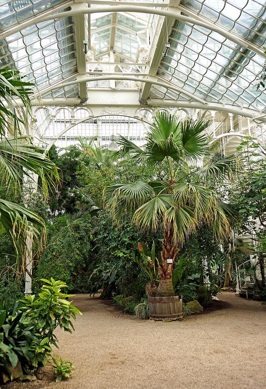 シェーンブルン宮殿と庭園群の画像12