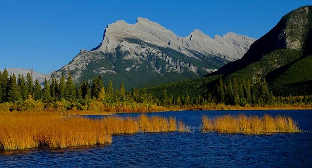 カナディアン・ロッキー山脈自然公園群の画像16
