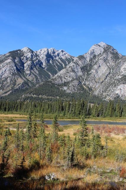 カナディアン・ロッキー山脈自然公園群の画像17