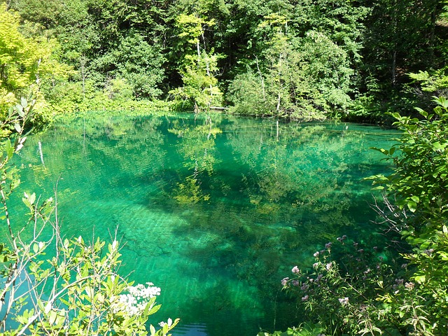 プリトヴィツェ湖群国立公園の画像9