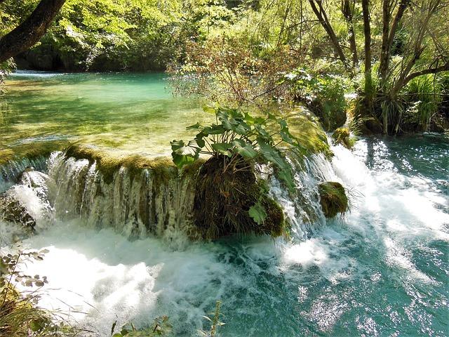 プリトヴィツェ湖群国立公園の画像15