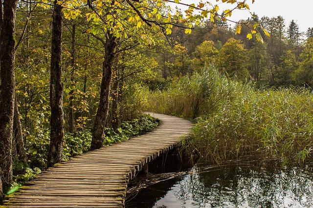 プリトヴィツェ湖群国立公園の画像18