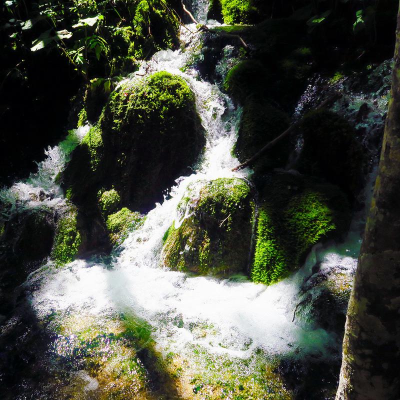 プリトヴィツェ湖群国立公園の画像23