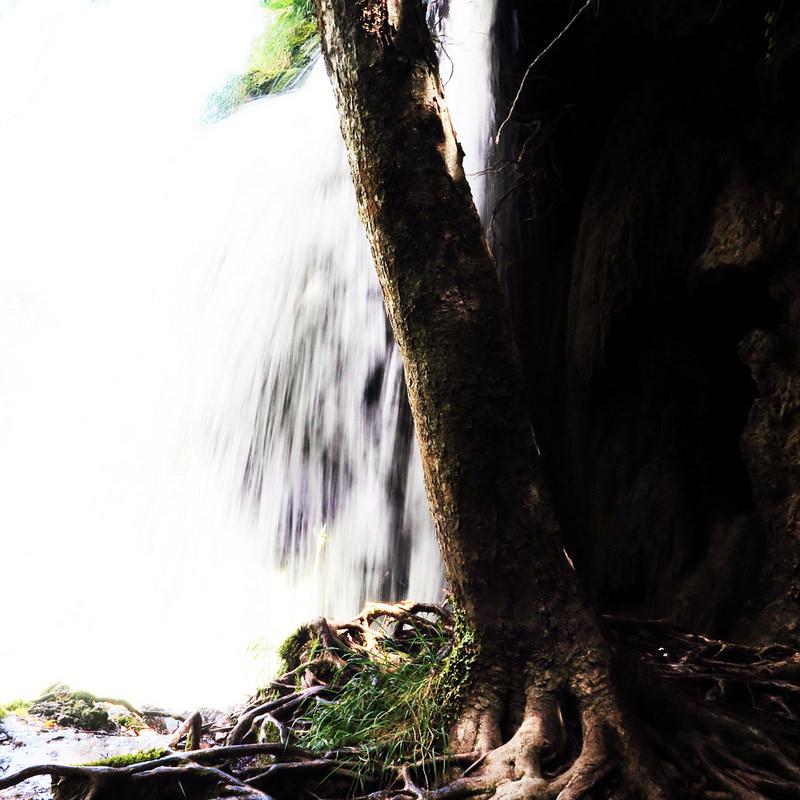 プリトヴィツェ湖群国立公園の画像25