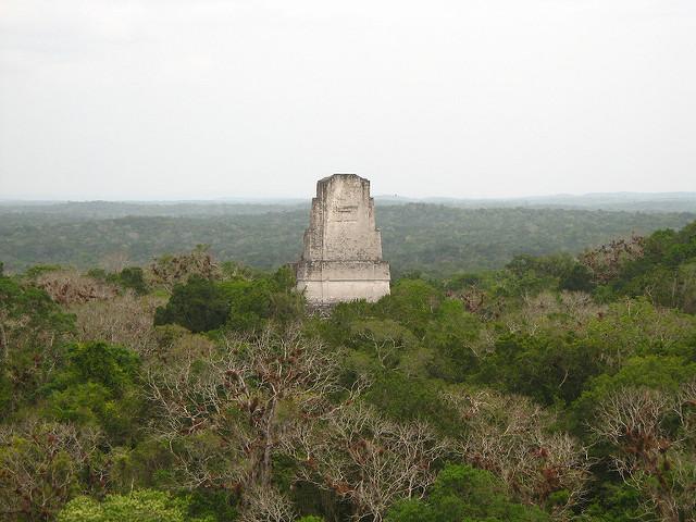 ティカル国立公園の画像13