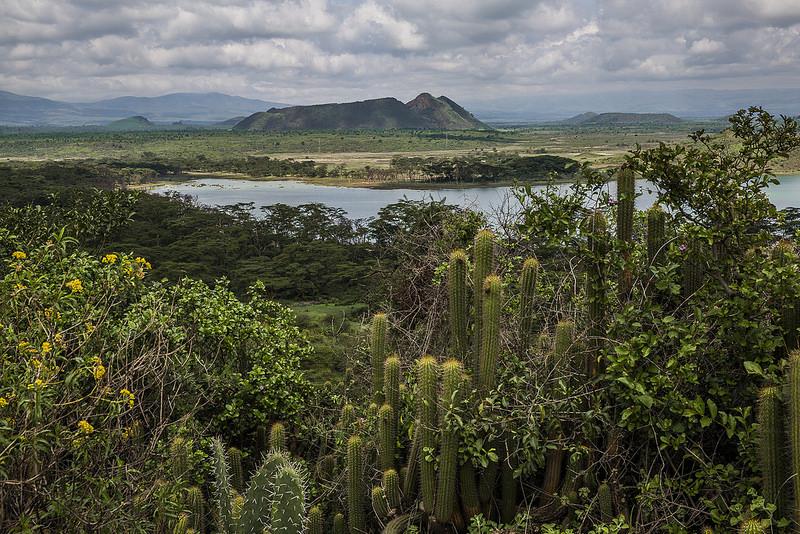 大地溝帯にある ケニアの湖沼群の画像10