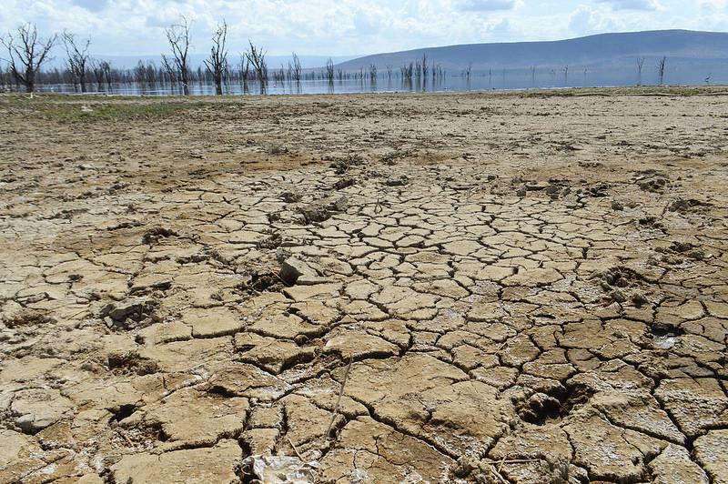 大地溝帯にある ケニアの湖沼群の画像17