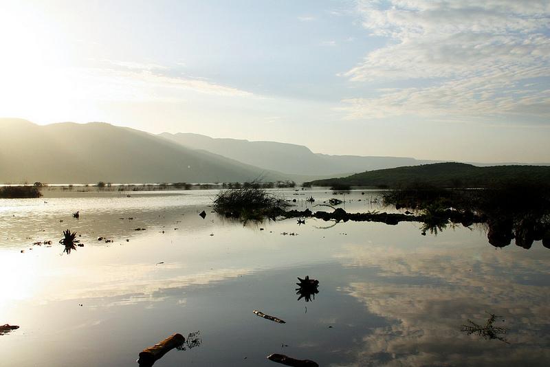 大地溝帯にある ケニアの湖沼群の画像25
