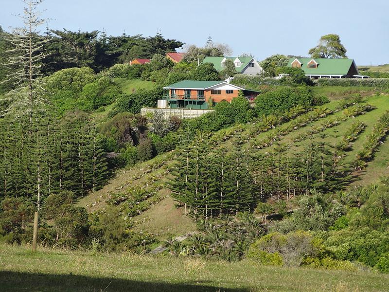 ココ島国立公園の画像2