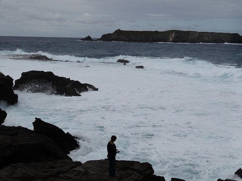 ココ島国立公園の画像6