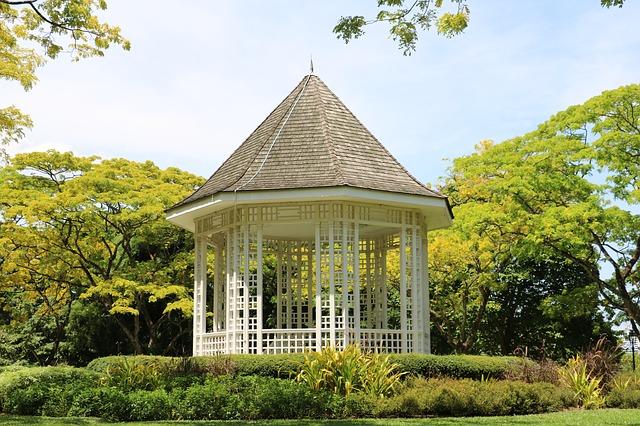 シンガポール植物園の画像10