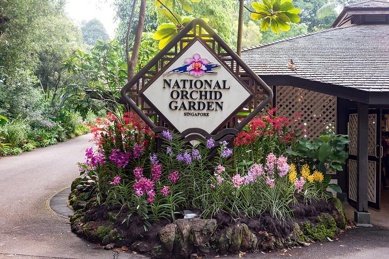シンガポール植物園の画像22