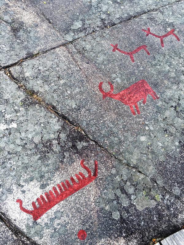 タヌムの線刻画群の画像23