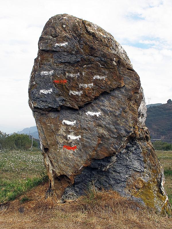アルタミラ洞窟と北スペインの旧石器時代の洞窟画の画像12