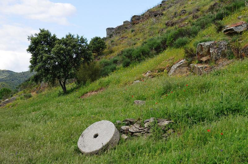 コア渓谷とシエガ・ヴェルデの先史時代のロックアート遺跡群の画像12