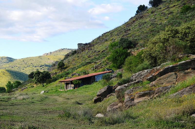 コア渓谷とシエガ・ヴェルデの先史時代のロックアート遺跡群の画像16