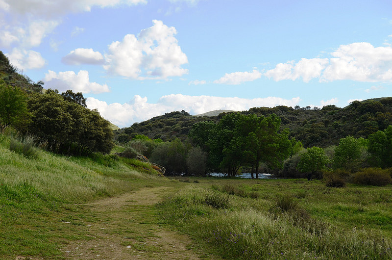 コア渓谷とシエガ・ヴェルデの先史時代のロックアート遺跡群の画像17