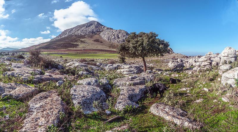 アンテケーラのドルメン遺跡の画像6