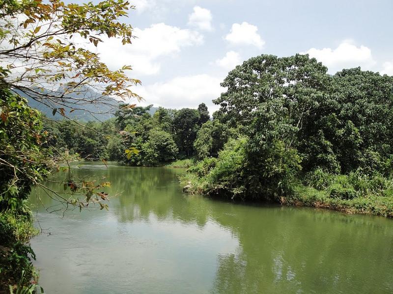 スリランカ中央高原の画像1