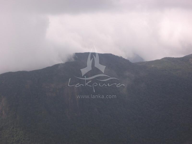 スリランカ中央高原の画像12