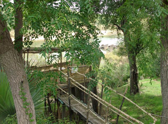 ニョコロ=コバ国立公園の画像1