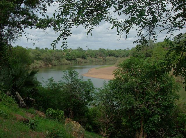 ニョコロ=コバ国立公園の画像2