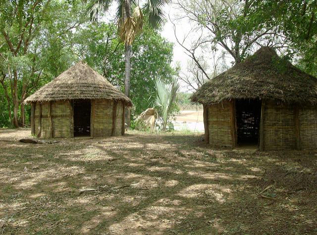 ニョコロ=コバ国立公園の画像3