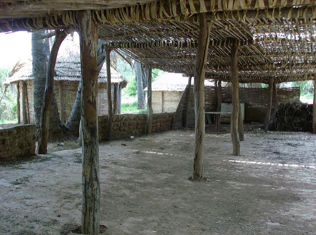 ニョコロ=コバ国立公園の画像4