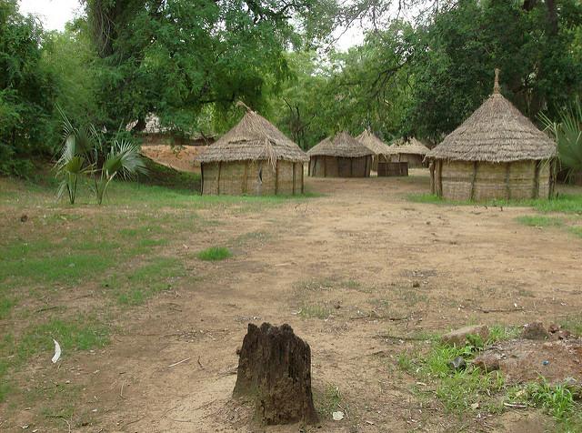 ニョコロ=コバ国立公園の画像6
