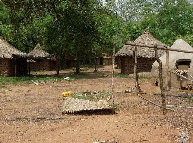 ニョコロ=コバ国立公園の画像19