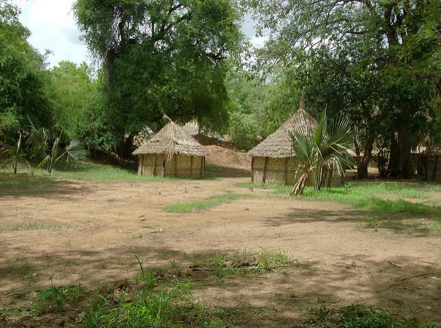 ニョコロ=コバ国立公園の画像21