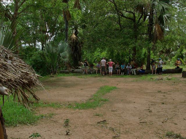 ニョコロ=コバ国立公園 | 世界...