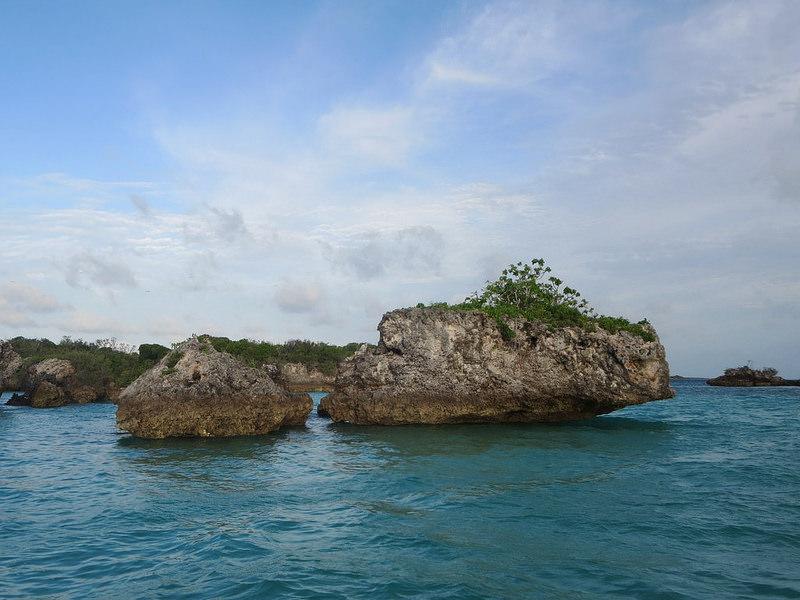 アルダブラ環礁の画像1