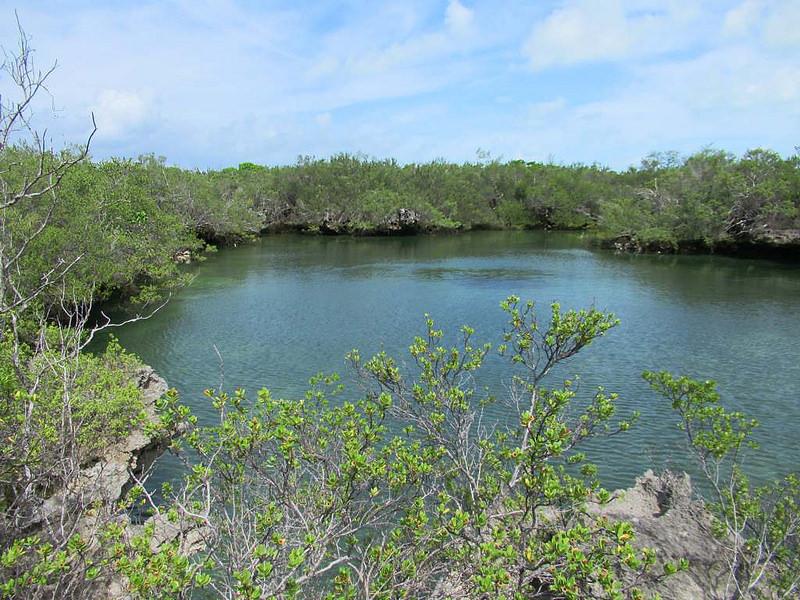 アルダブラ環礁の画像2