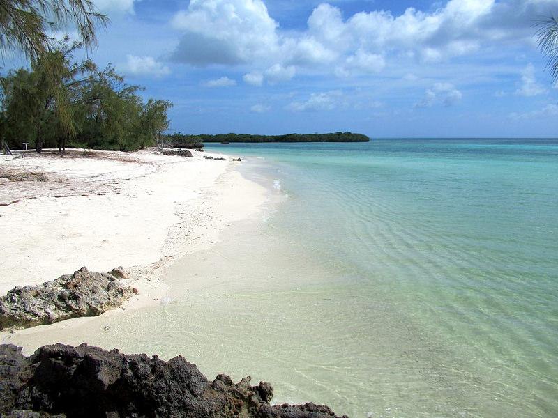 アルダブラ環礁の画像6