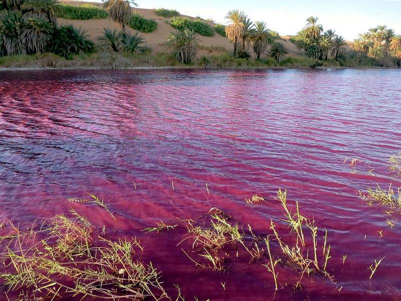 ウニアンガ湖沼群 | 世界遺産プラス | 世界遺産をもっと楽しむための ...