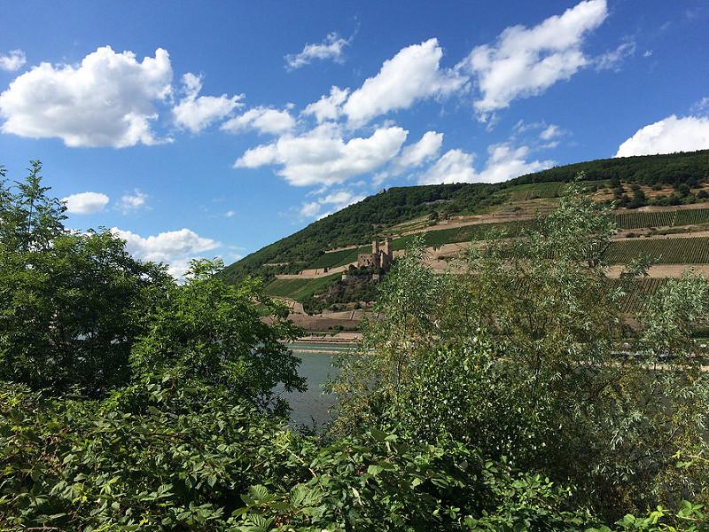 ライン渓谷中流上部の画像12