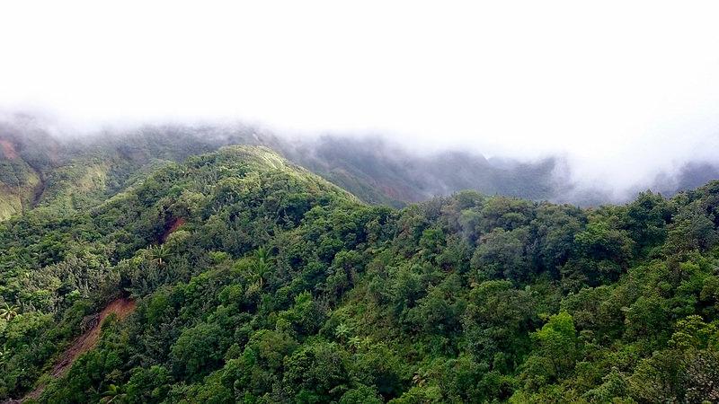 モルヌ・トロワ・ピトン国立公園の画像3