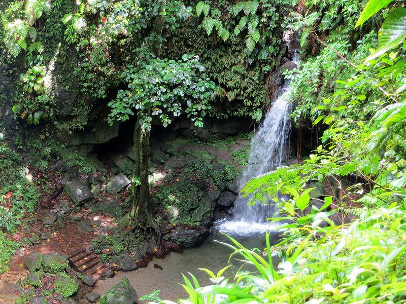 モルヌ・トロワ・ピトン国立公園の画像5