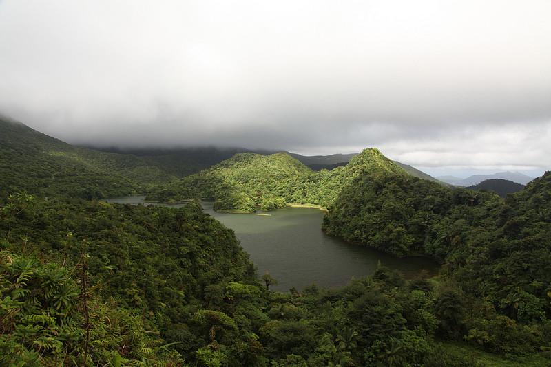 モルヌ・トロワ・ピトン国立公園の画像8