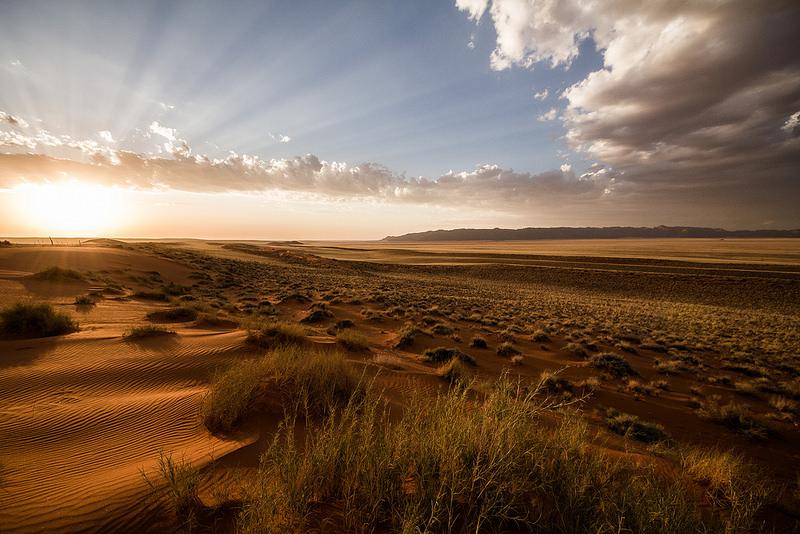ナミブ砂海の画像9