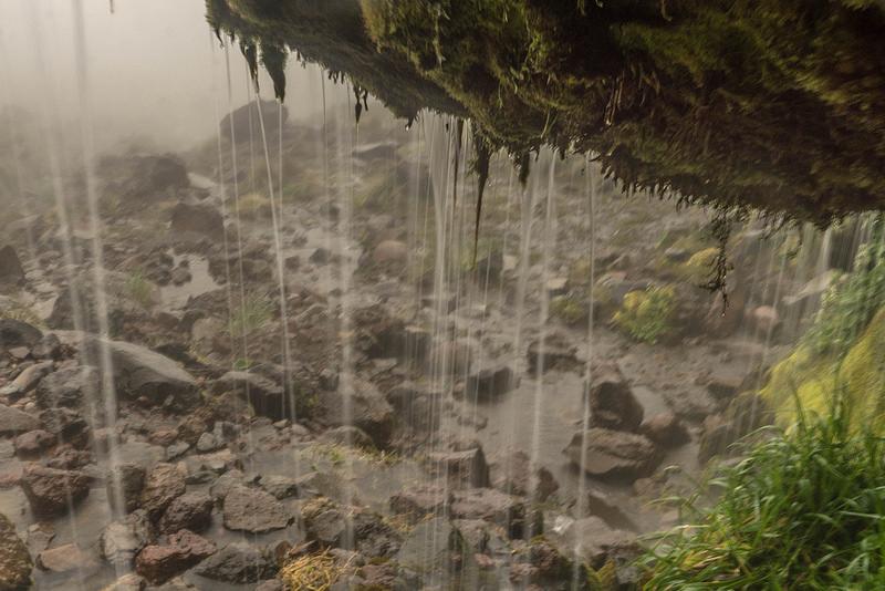 トンガリロ国立公園の画像10