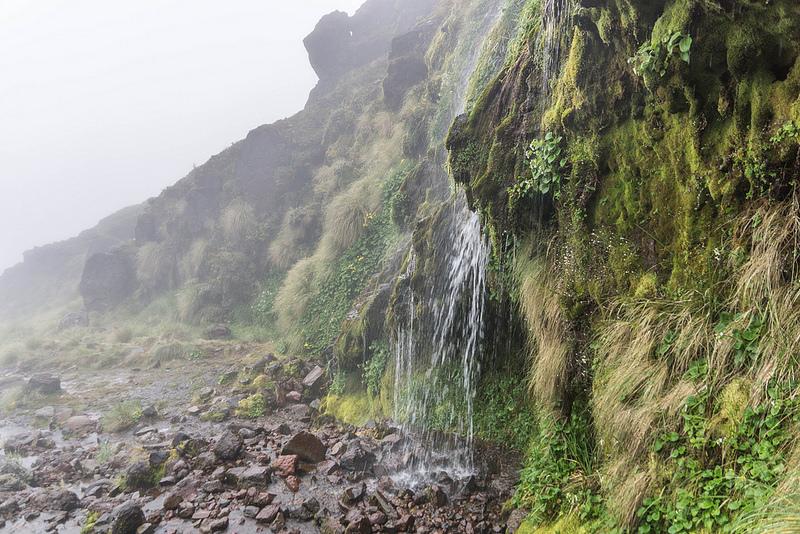 トンガリロ国立公園の画像11