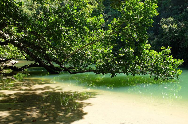 プエルト・プリンセサ地下河川国立公園の画像16